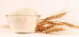 Circuito productivo de la harina de trigo