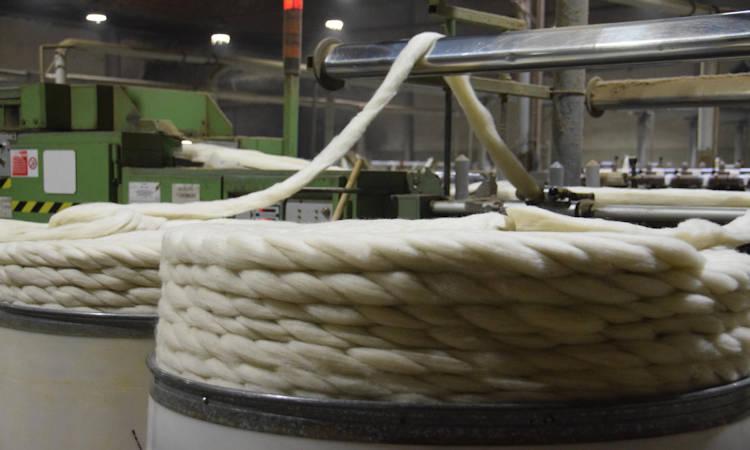 Circuito productivo de la lana