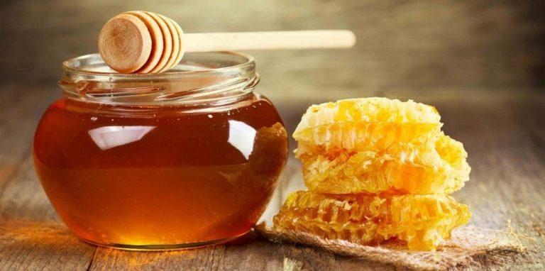 Circuito productivo de la miel