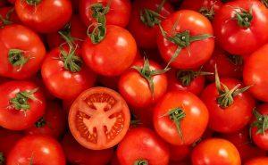 Circuito productivo del tomate