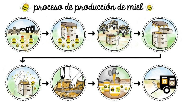 Proceso de la miel