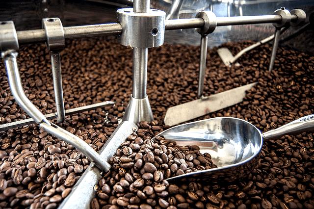 imagenes del proceso del cafe