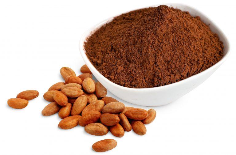 Circuito productivo del cacao