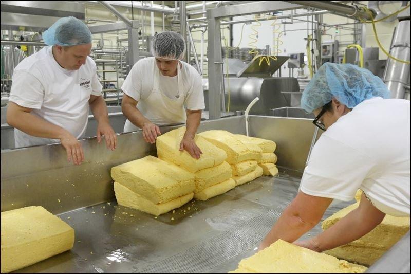 Elaboracion del queso paso a paso
