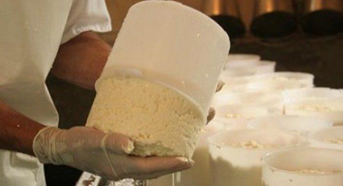 Pasar de leche a queso