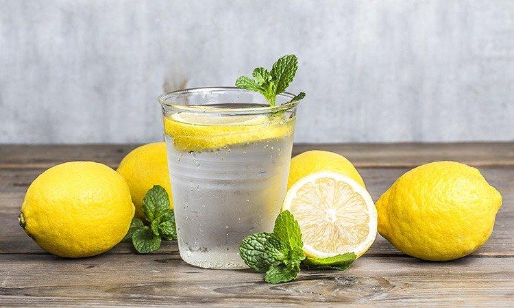 Circuito Productivo del Limón: Proceso Completo de este fruto